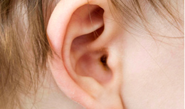 Outer view of ear - the tympanostomy tube is not visible